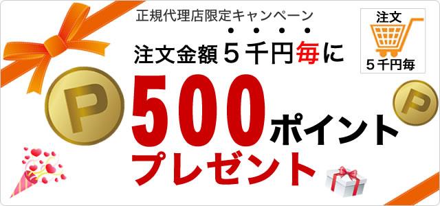 桜香純子の桜香流セルスルーエステ ウエストシェイプの関連キャンペーン
